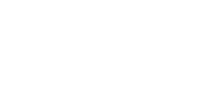 Wadhwani Foundation